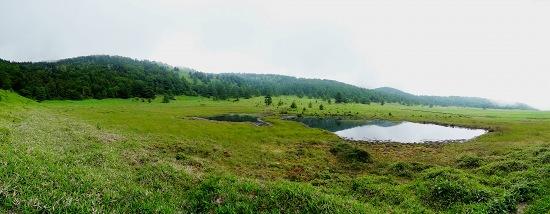 11池の平湿原.jpg